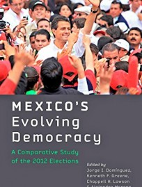 Reseña-Sergio-Evolving-Democracy